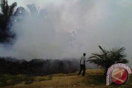 Masyarakat Mukomuko keluhkan polusi pabrik sawit