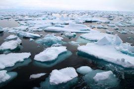 Perubahan iklim mendorong ikan ke kutub