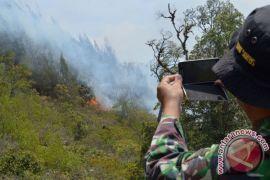 Jalur pendakian Gunung Lawu ditutup akibat kebakaran