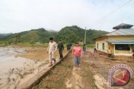 Sekitar 100 Hektare Sawah Rusak Akibat Banjir