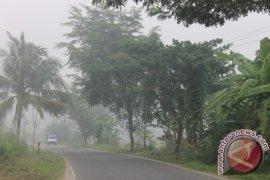 Polri Periksa 253 Pembakar Hutan