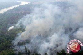 Korban Kebakaran Lahan Tagih Janji Bantuan