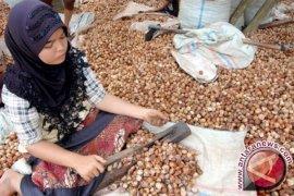Pengusaha Pakistan Ingin Beli Pinang Aceh