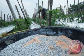 Pemkab Tulungagung upayakan buka blokir jatah pupuk subsidi petani