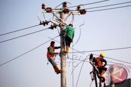 Anggota KEIN: Indonesia berpotensi krisis listrik 1.000 MW