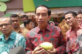 Presiden Minta Produksi Buah Nusantara Ditingkatkan