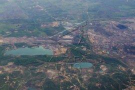 Hari lingkungan, WWF Ungkap Kondisi Borneo