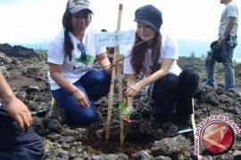 Yayasan YBHL Lakukan Penghijauan di Batur
