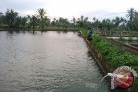 DKP lengkapi fasilitas untuk pembenihan ikan 2019