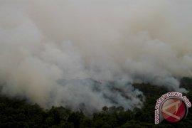 Di Bangka Tengah 130 hektare Kawasan hutan  rusak terbakar