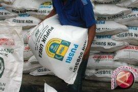 Distribusi pupuk subsidi di Jambi 11.675 ton