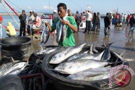 Pedagang Ikan Meulaboh Keluar Pasar