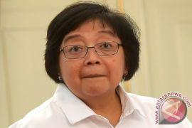 Kementerian LHK evaluasi penghentian pengusutan kasus kebakaran lahan