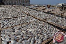 Produksi Ikan Kering