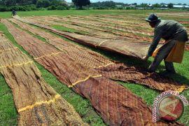 Pengusaha sarung batik Pekalongan sasar Asia Tenggara