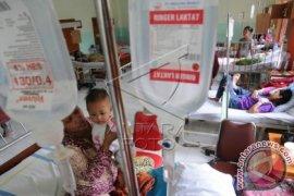 Jakarta waspada kejadian luar biasa DBD