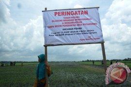 Tanah Khas Desa Jombang