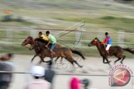 Wabup Minta Pacuan Kuda Jadi Kegiatan Provinsi