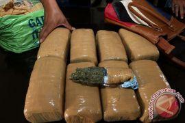 Tiga mahasiswa ditangkap miliki empat kilo ganja