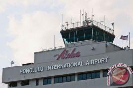 11 orang tewas saat pesawat jatuh di  Hawaii