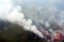 Titik panas baru bermunculan di Bengkalis Riau