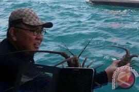 Gubernur Bengkulu: Laut solusi konflik lahan pertanian