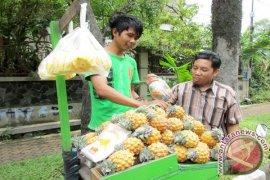 Nanas dan Buah Naga Indonesia kini menyasar pasar Tiongkok