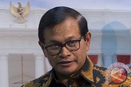 Seskab: caketum Golkar pilihan menteri atau pejabat bukan suara Istana