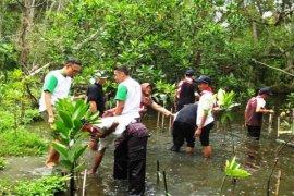 Mahasiswa Tangerang Tanam Ribuan Banteng Pohon Mangrove