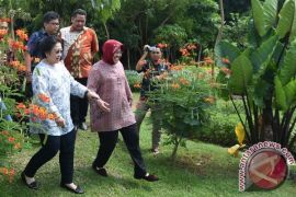 Surabaya klaim sukses turunkan suhu kota hingga 2 derajat