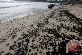 Panglima Laot: batu bara cemari kawasan wisata Lampuuk, Aceh Besar