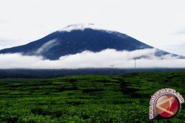 Pos Pengamatan : Gunung Kerinci tidak Erupsi