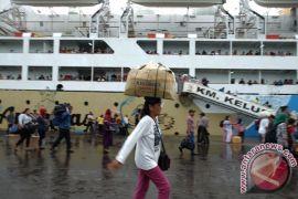 """Pelni: ribuan penumpang arus balik """"banjiri"""" Belawan"""