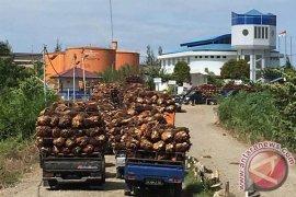 IKM Mukomuko didorong berinovasi minyak mentah sawit
