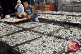Mahasiswa PNP Buat Alat Pengering Ikan Asin Terprogram