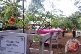 Para walikota tanam pohon nusantara khas daerah