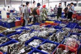 Kaltim Membutuhkan Pelabuhan Nusantara