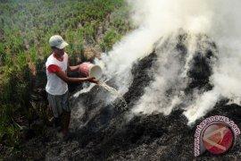 Kebakaran lahan kembali terjadi di Singkawang