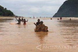 Pantai Pulau Merah Banyuwangi Digenangi Lumpur