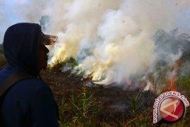 Kebakaran Lahan di Singkawang Timur Meluas