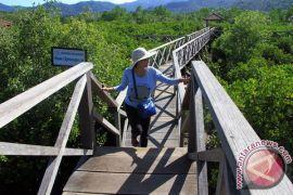 Ayo swafoto di hutan bakau di titik-titik ini