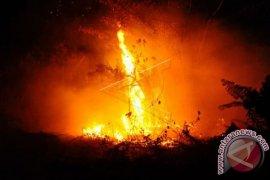Banyak Orang Hilang Dalam Kebakaran Hutan California Amerika