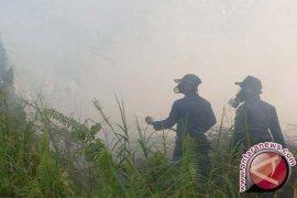 BPBD Batanghari pantau intensif daerah rawan kebakaran hutan dan lahan