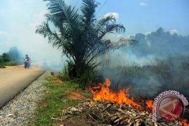 Menhut apresiasi penanganan kebakaran hutan dan lahan di Kalbar