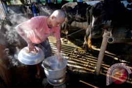 Bahan Bakar Alternatif Biogas