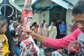 Gubernur pantau pembagian daging kurban