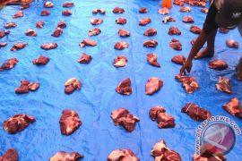 600 mahasiswa-dosen IPB kawal penyembelihan hewan kurban