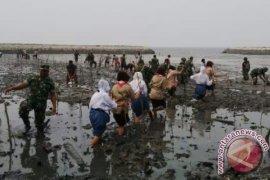 Pemkab Tangerang survei lahan pesisir untuk tanam bakau
