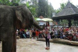 Putri Pariwisata Diharapkan Promosikan Indahnya Wisata Indonesia