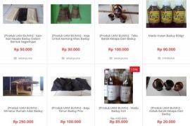 Wammby promosikan kerajinan Baduy di internet